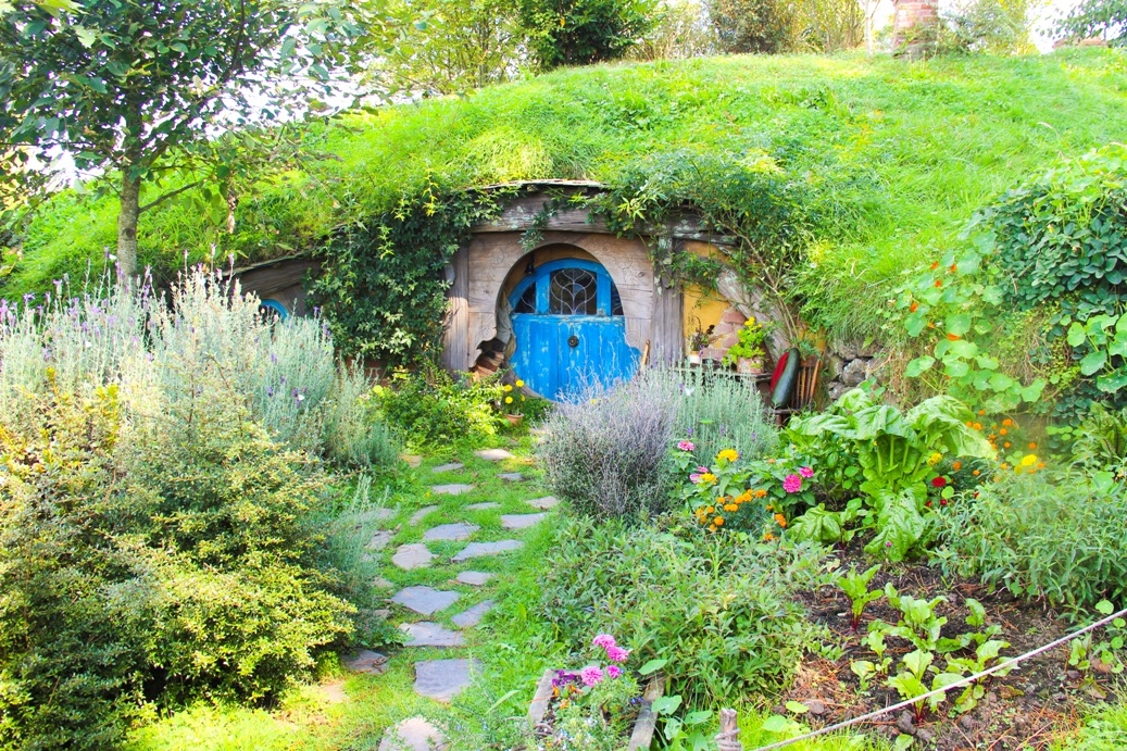 Hobbit Höhle in Matamata 4